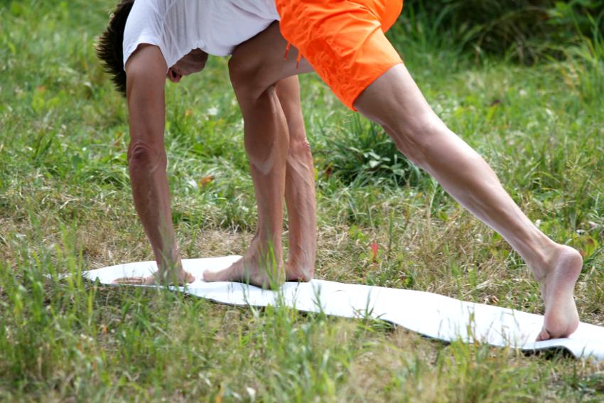 Schwung Yoga-Asana