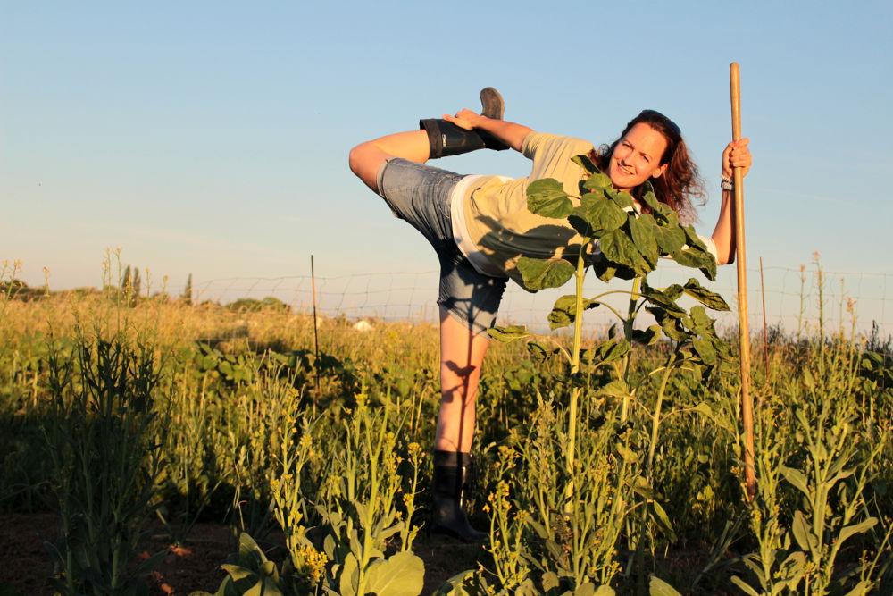 Yoga Meine Ernte Lebensflow